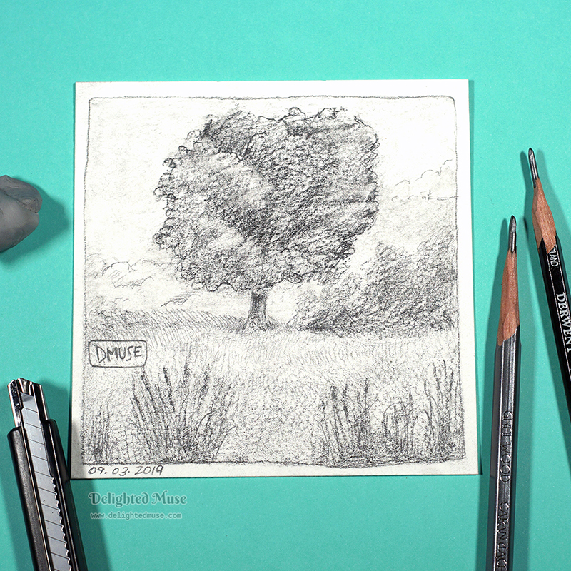 Tree drawing on watercolor paper in graphite