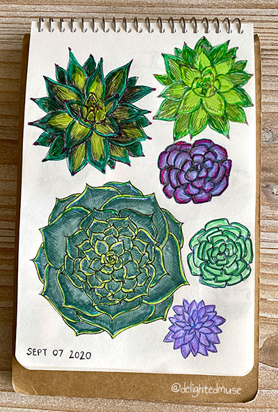 Sketchbook page of succulents in ballponit pen and marker, mostly green with some smaller purple ones