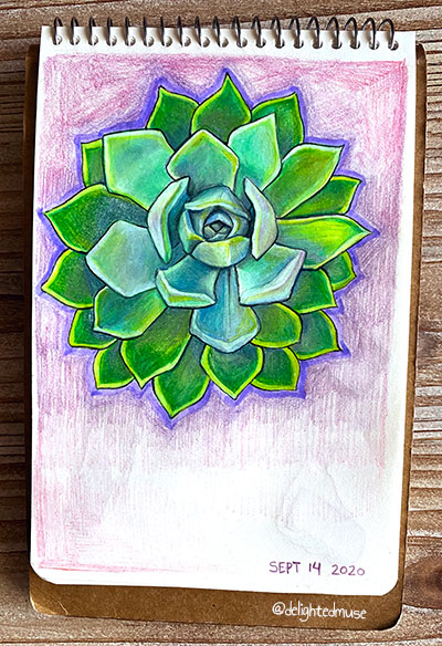 A sketchbook page showing a single Aeonium succulent, with purple colored pencil hatching in the background