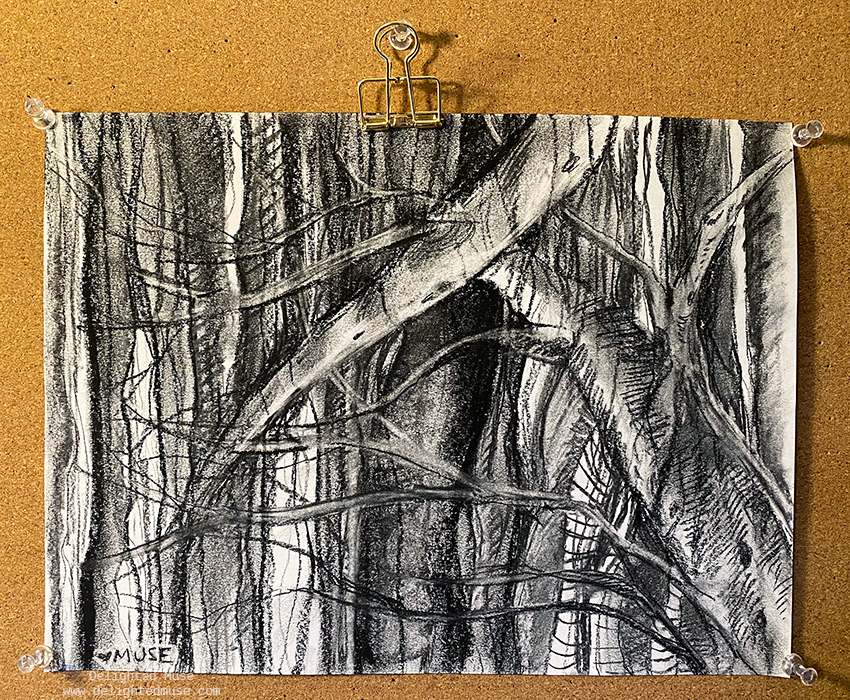 Charcoal drawing of tree branches and vertical marks on white paper, with the drawing pinned to a bulletin board.