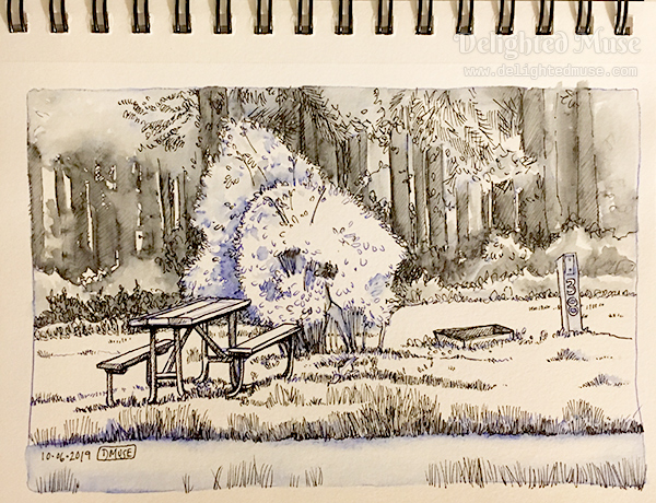 Sketchbook page with a fountain pen drawing of a camp site with a picnic table and fire pit.