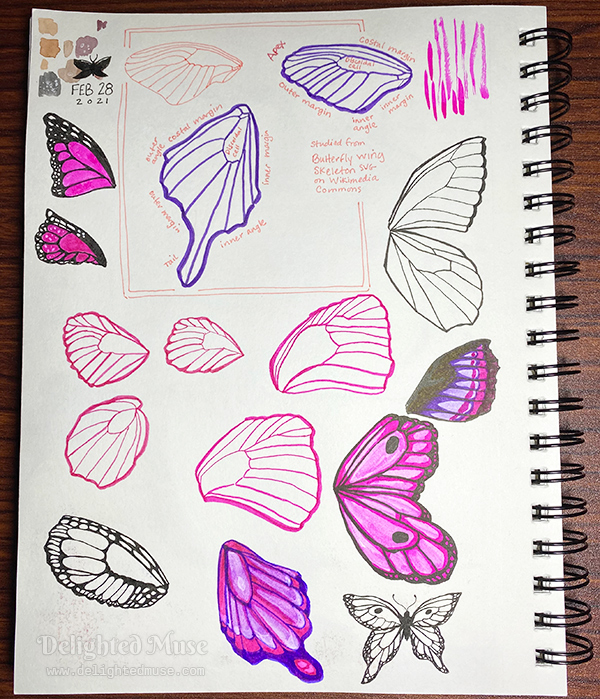 A sketchbook page with ink drawings of butterfly wings.